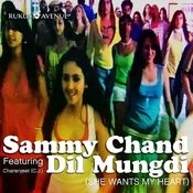 Dil Mungdi Songs