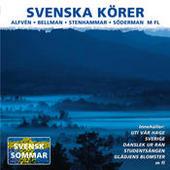 Svenska Körer Songs