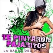 Te Pintaron Pajaritos - Single Songs