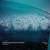 Bushwick17 Songs