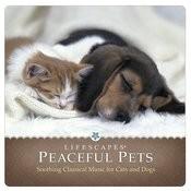Peaceful Pets Songs