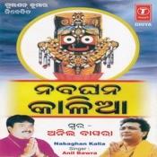 Nabaghan Kalia Songs