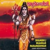 Paahimaam Paahimaam Pannageshwara Song