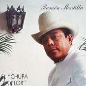 El Chupa La Flor Songs