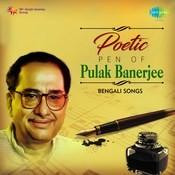Se Amar Chhoto Bon MP3 Song Download- Poetic Pen Of Pulak