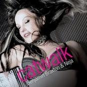 Catwalk (Radio Version) Song