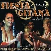 Pedimento (Rumba-Tangos Gipsy Flamenco) Song