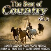 The Best Of Country Hits Vol. 2 Songs