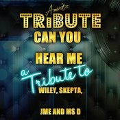 Can You Hear Me (A Tribute To Wiley, Skepta, Jme And Ms D) Song