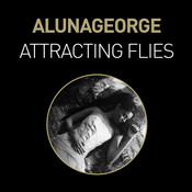 Attracting Flies (Remixes) Songs