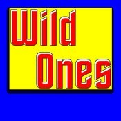 Wild Ones (I Heard You Like The Wild Ones) Song