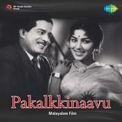 Pakalkkinavu Songs