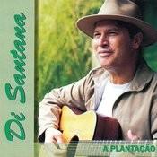 A Plantação Songs