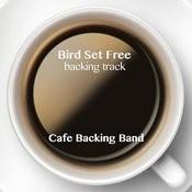 Bird Set Free (Instrumental Version) Songs Download: Bird