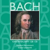 Cantata No.130 Herr Gott, dich loben alle wir BWV130 : II Recitative -