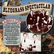Bluegrass Spectacular Songs