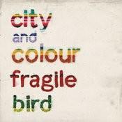 Fragile Bird Songs