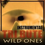 Wild Ones (Flo Rida Feat. Sia Instrumental Tribute) Song