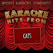 Karaoke Hits From Cats Songs