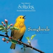 Songbirds By The Stream Songs