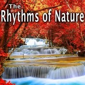 The Rhythms Of Nature Songs