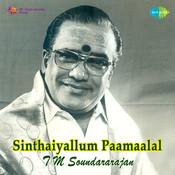 Sinthaiyallum Paamaalal Tamil Songs