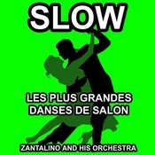 Les Plus Grandes Danses De Salon: Slow Songs