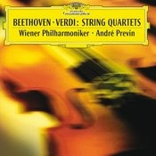 String Quartet No.14 In C Sharp Minor, Op.131 - Version For String Orchestra By Dimitri Mitropoulos: 3. Allegro Moderato - Attacca: Song