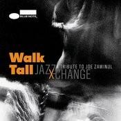 Walk Tall - A Tribute To Joe Zawinul Songs