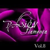 Pasión Flamenca Vol.8 Songs