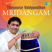 Mridangam By Thiruvarur Vaidyanathan  Songs