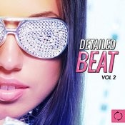 Detailed Beat, Vol. 2 Songs