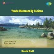 Vandemataram Patriotic Songs On Variousinstruments Songs