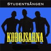 Studentsången [Mösspåtagningsremix] Songs