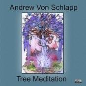 Tree Meditation Song