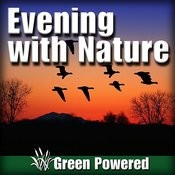 Evening with Nature (Nature Sound) Songs