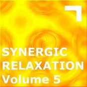 Synergic Relaxation: Session 5 Songs