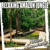 Calming Amazon Jungle Ambience For Tranquil Meditation And Healing (Nature Sound) Song