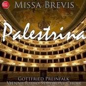 Palestrina: Missa Brevis Songs