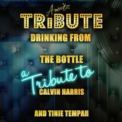 Drinking From The Bottle (A Tribute To Calvin Harris And Tinie Tempah) Song