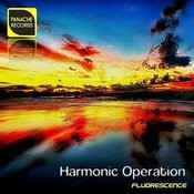Fluorescence (Harmonic Strings Mix) Song