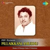 Pillaikkani Amudhu Songs