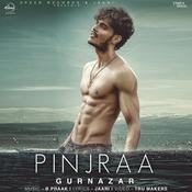 Pinjraa Song