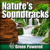 Nature's Soundtracks Songs