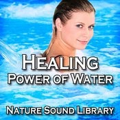 Gently Trickling Brook For Inner Healing And Contemplation Song