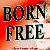 Born Free (Originally Performed By Kid Rock)[Karaoke Version] Song