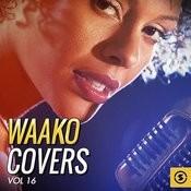 Waako Covers, Vol. 16 Songs