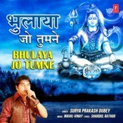Bhulaya Jo Tumne Songs