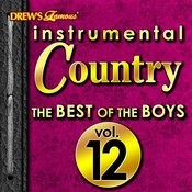 Instrumental Country: The Best Of The Boys, Vol. 12 Songs