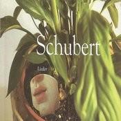 Schubert - Lieder Songs